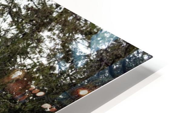 Rural Decay II HD Sublimation Metal print