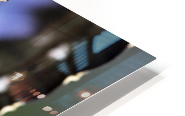 Blue Morpho HD Sublimation Metal print