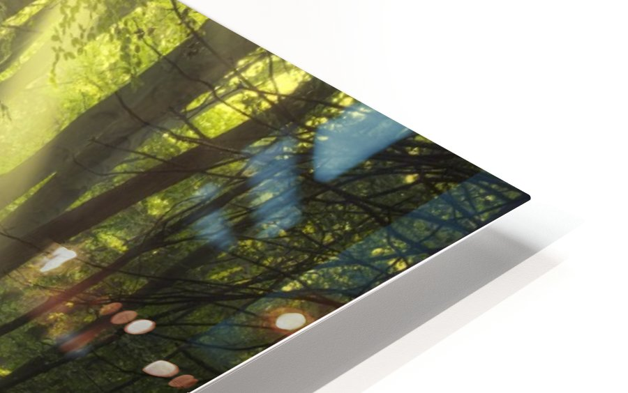 When the sun touch your heart HD Sublimation Metal print