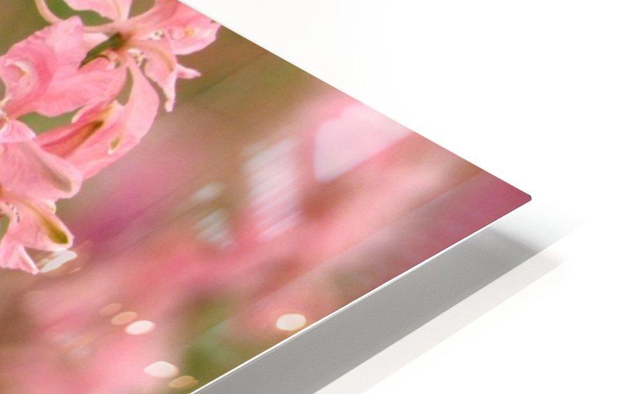 Dreamy HD Sublimation Metal print