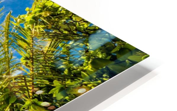 Palm and tropical beach HD Sublimation Metal print
