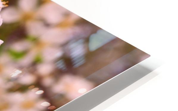 Spring clock HD Sublimation Metal print