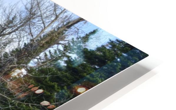 Dream Land HD Sublimation Metal print
