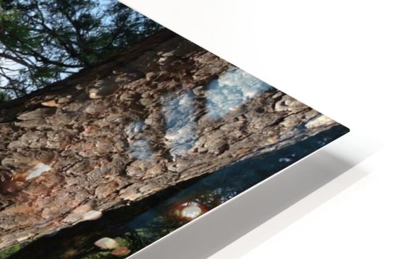 View of the Potomac at Great Falls HD Sublimation Metal print
