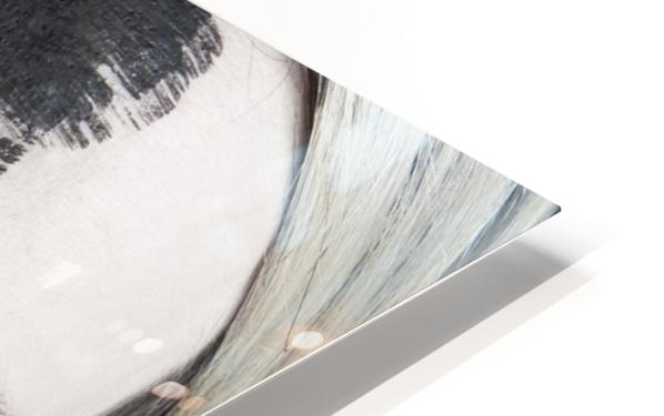 4 Elements - Fire HD Sublimation Metal print