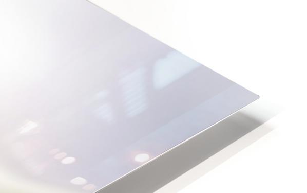 Anemone HD Sublimation Metal print