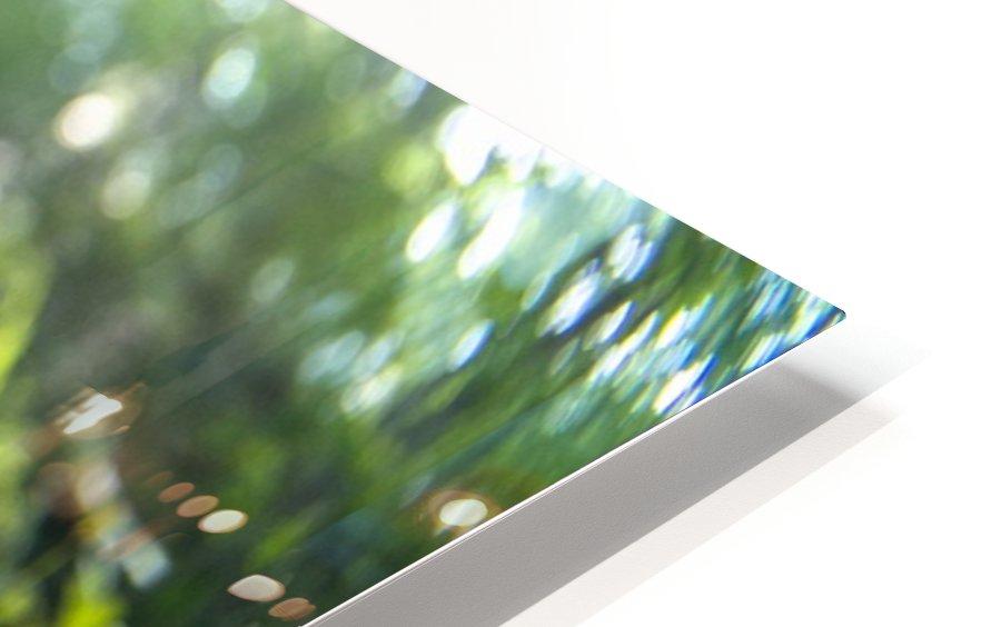 P1450797 HD Sublimation Metal print