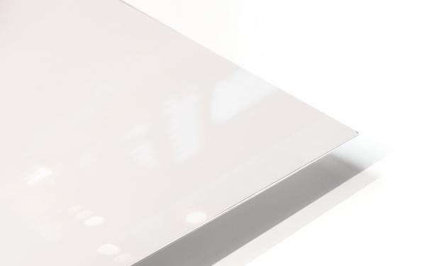 Mist HD Sublimation Metal print