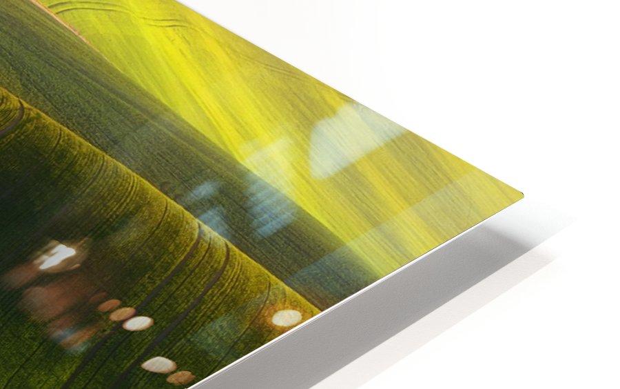 Green fields HD Sublimation Metal print