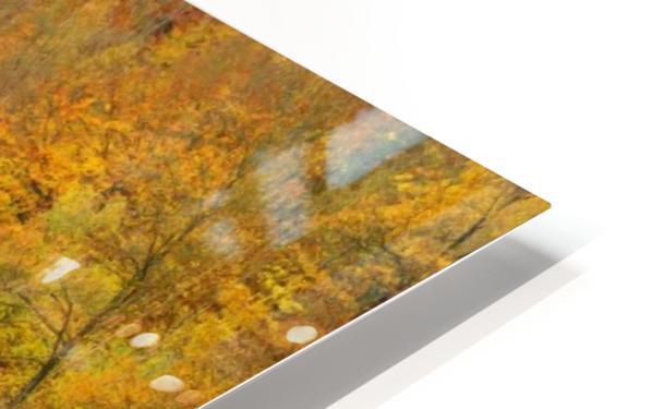 Autumnal silence HD Sublimation Metal print