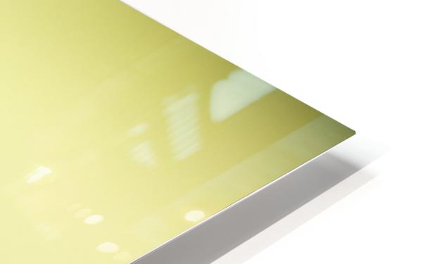 Nigella HD Sublimation Metal print