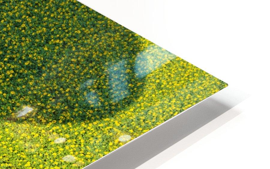A Hundred Million Suns HD Sublimation Metal print