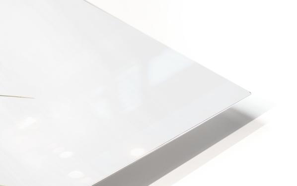 Zensation HD Sublimation Metal print