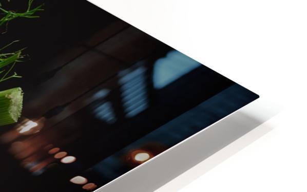 Fennel HD Sublimation Metal print