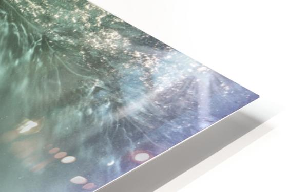Prelude HD Sublimation Metal print