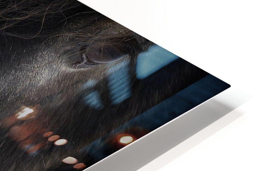 Ulysses HD Sublimation Metal print
