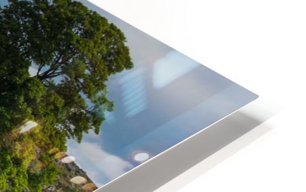 Emsworthy bluebells HD Sublimation Metal print