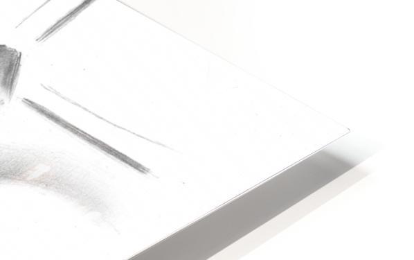 Schiedam 21-08-16  HD Sublimation Metal print