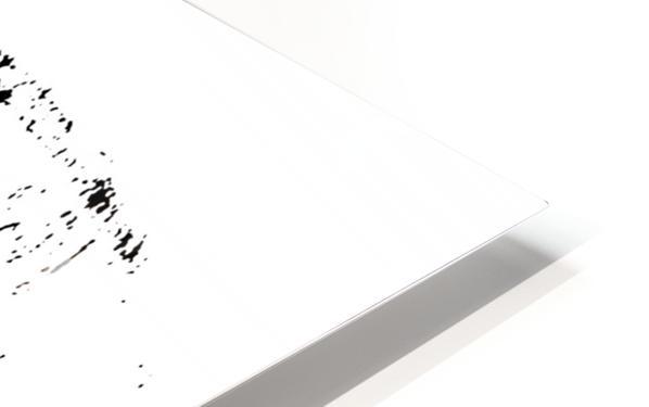 Monsieur HD Sublimation Metal print