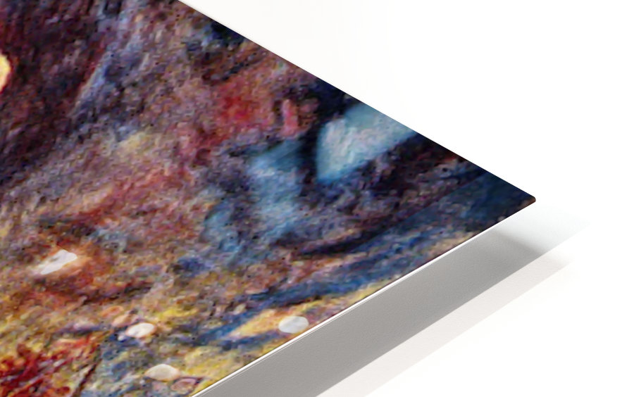 The Dreamer by Renoir HD Sublimation Metal print