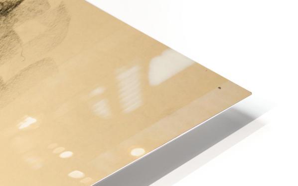 Female Nude Study HD Sublimation Metal print
