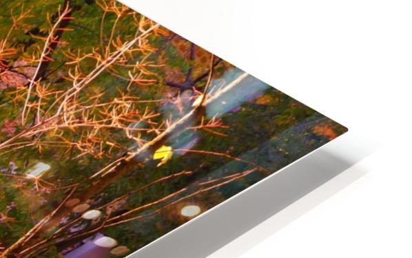Autumn Colors II HD Sublimation Metal print