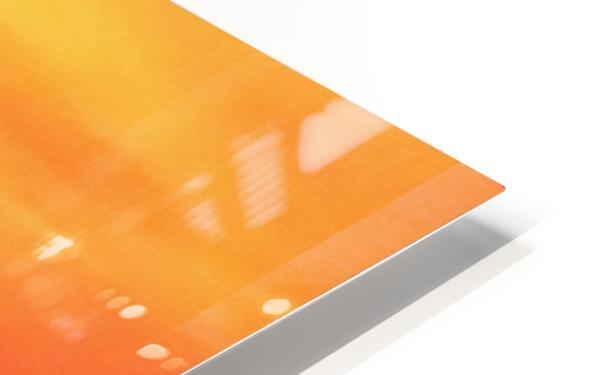 Soaring High HD Sublimation Metal print