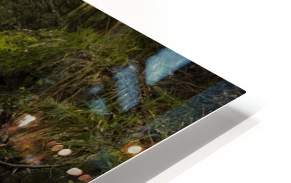 river HD Sublimation Metal print