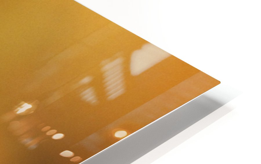 Frost On A Fern Leaf HD Sublimation Metal print