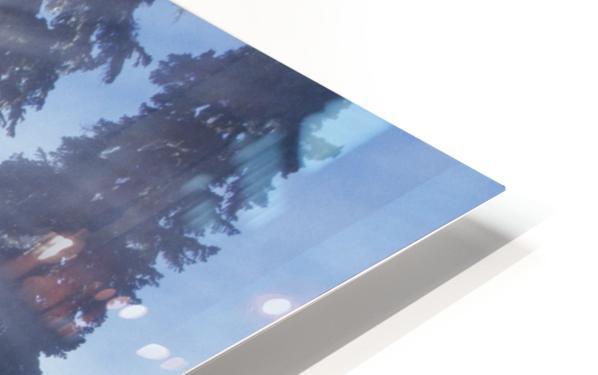 Sunbeams Through Pine Trees HD Sublimation Metal print