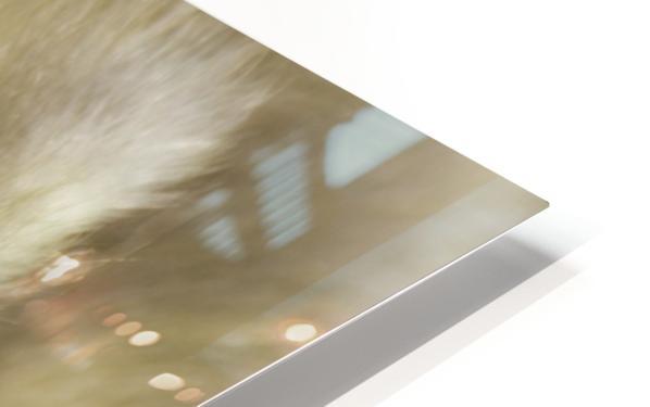 Fuzzy Gosling HD Sublimation Metal print