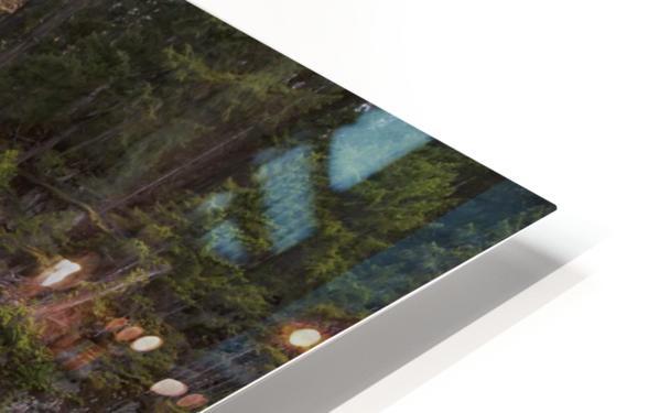 Myra Falls, Strathcona Provincial park; British Columbia, Canada HD Sublimation Metal print