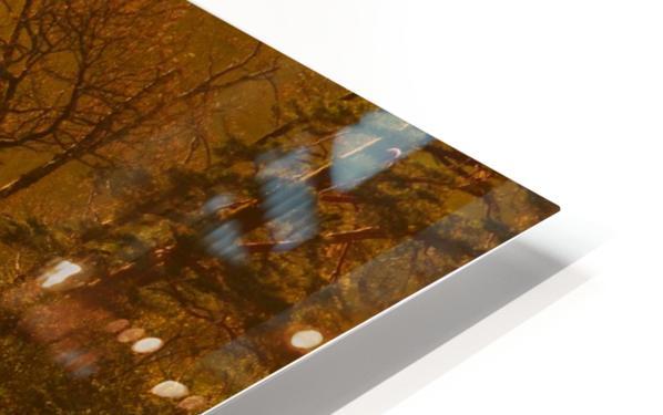 Gold Morning, Lake District, UK HD Sublimation Metal print