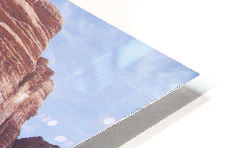 Baby camel and mother; Wadi Rum, Jordan HD Sublimation Metal print