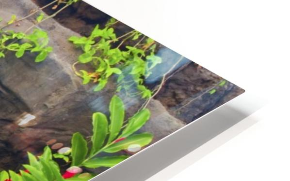 Waterfall into Resort Pool HD Sublimation Metal print