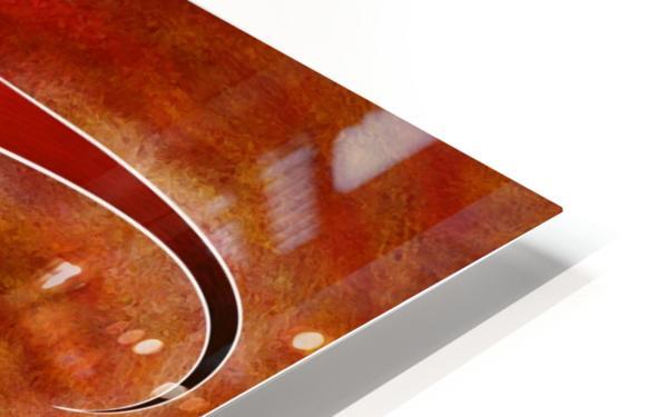 Cassanita sol - martian bird HD Sublimation Metal print