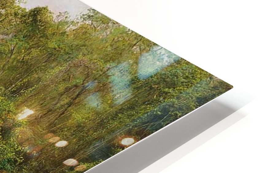 View of a forest in Jamaica HD Sublimation Metal print