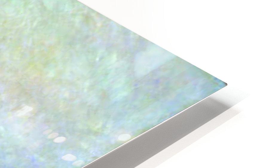 Monet HD Sublimation Metal print