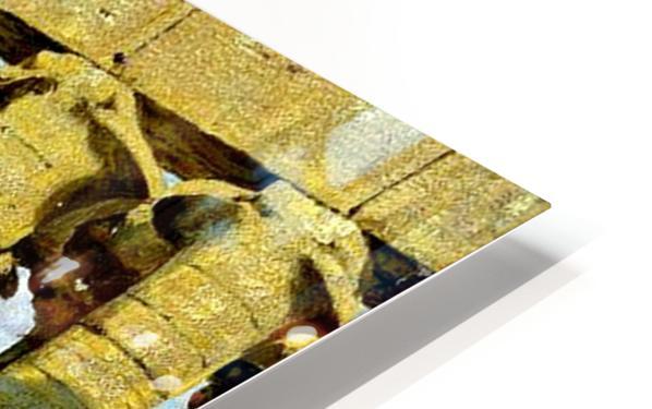 Cayro Egipt HD Sublimation Metal print
