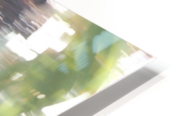 Bird of Prey In-Flight 1 Abstract HD Sublimation Metal print