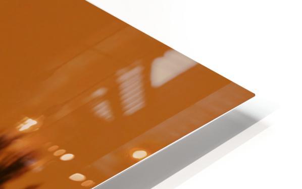 Cormorant perch HD Sublimation Metal print