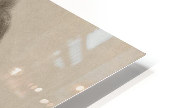 Pronk 1750 HD Sublimation Metal print