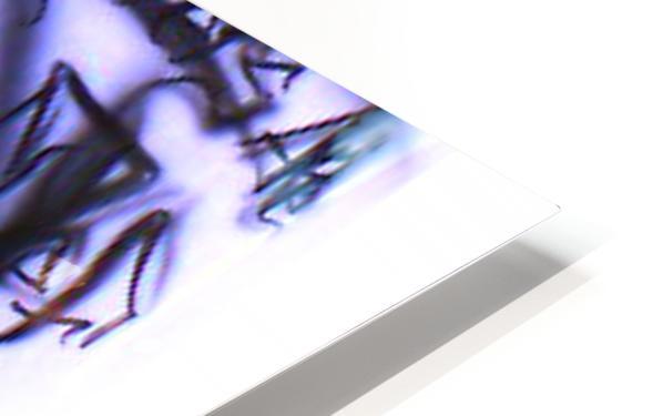 mos def HD Sublimation Metal print