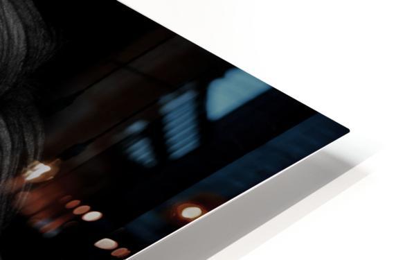KIM BASINGER HD Sublimation Metal print
