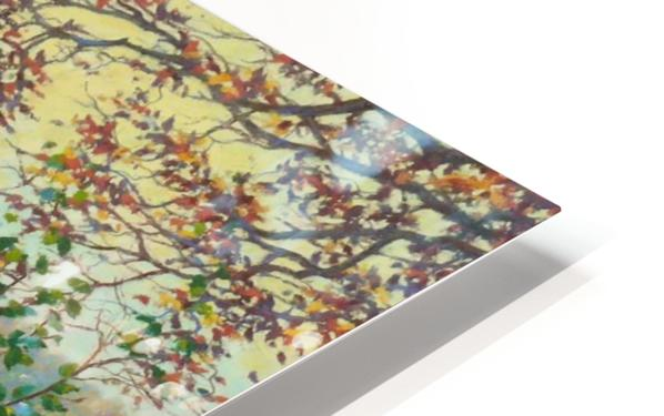 Smooth HD Sublimation Metal print