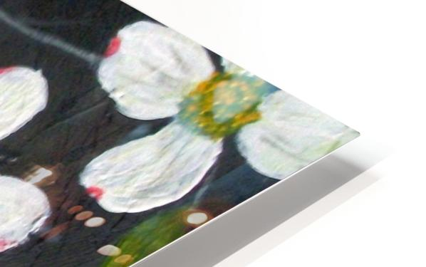 dogwoods HD Sublimation Metal print