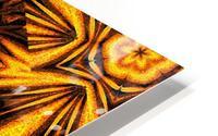 Golden Dandelion HD Metal print