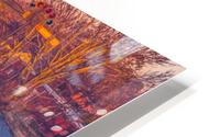 Lonoke, AR   Red Oak  HD Metal print