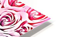 blooming rose pattern texture abstract background in pink and blue HD Metal print