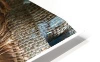 Chair & Caterpiller HD Metal print